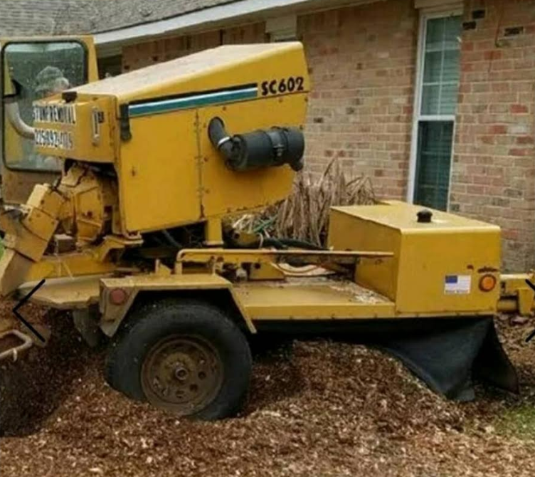 Stump grinding in Baton Rouge